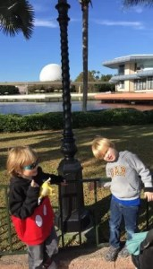 Epcot, 2 boys, autism what to know