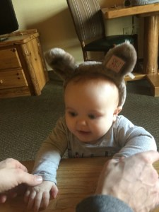 baby wolf ears great wolf lodge sandusky ohio review