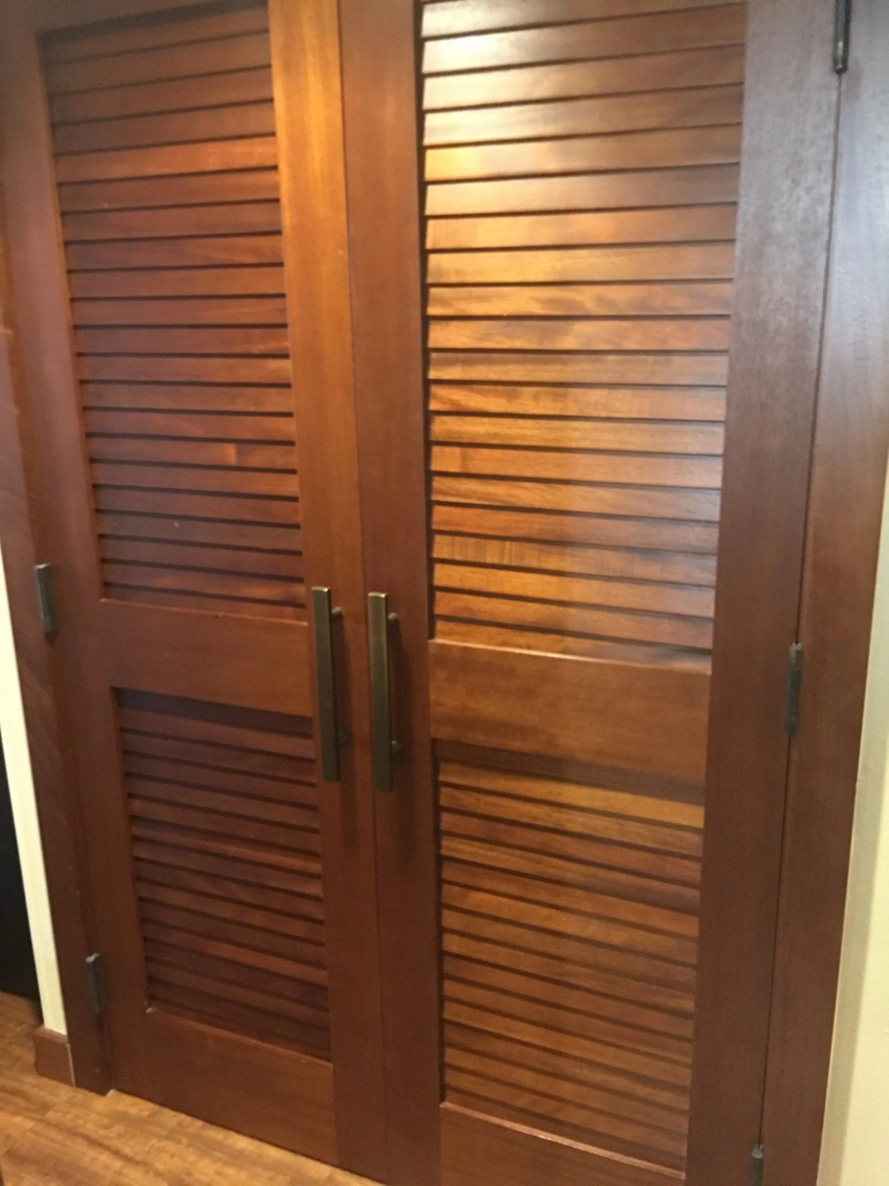 Disney Vacation Club Studio at the Polynesian Village Resort closet