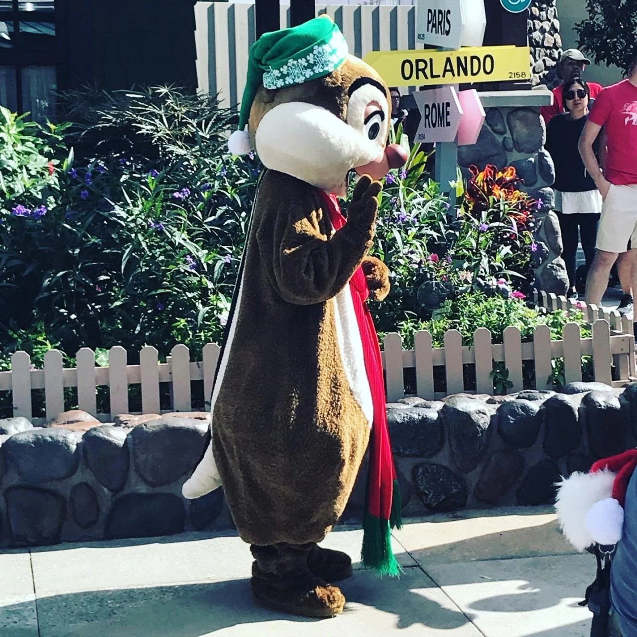 Chip dressed as an elf for Christmas in Walt Disney World