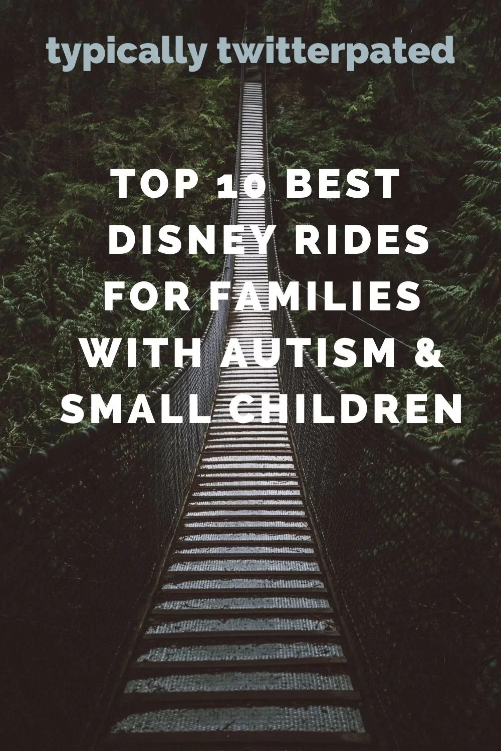 Bridge with green foliage with the words 'Top 10 Best Disney rides for families with autism & small children'