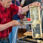 39th Annual Beekeeping Field