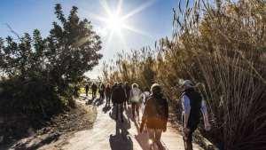 Healthy Walking: TEULADA – Font Santa - Sisca CW @ TEULADA – Font Santa - Sisca CW