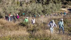 Healthy Walking: Teulada - Around the camis between Teulada LDL - Borda – Sisca @ Teulada - Around the camis between Teulada LDL - Borda – Sisca