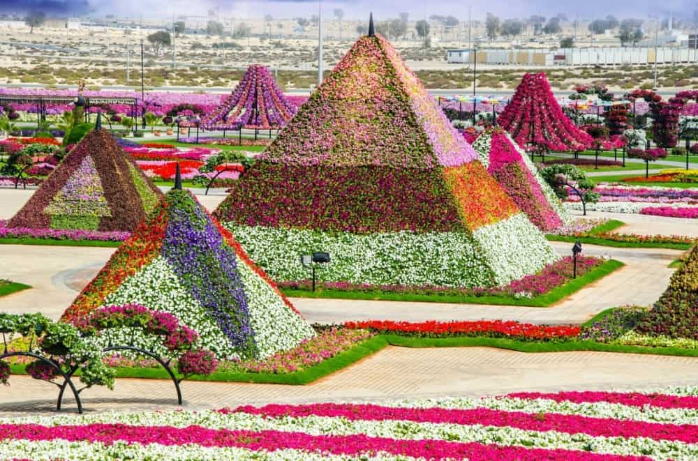 صور دبي ميراكل غاردن