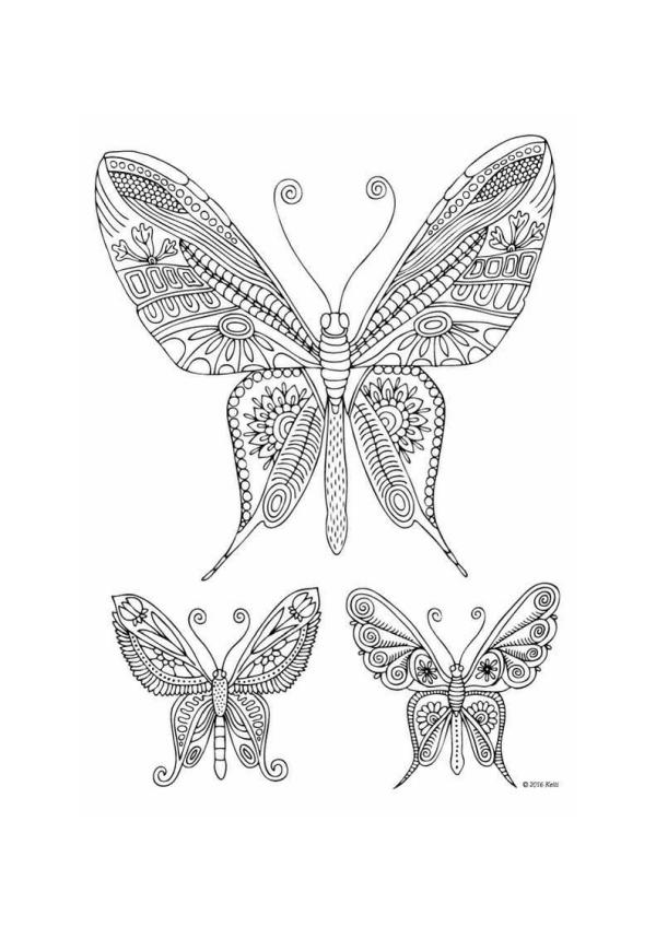 Бабочки: детские раскраски А4 для скачивания и печати