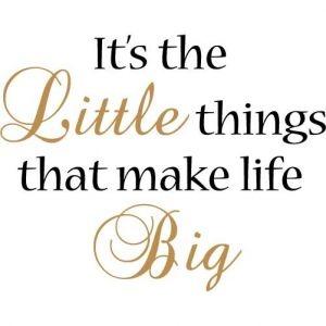 the little things_birdeeandthebeat