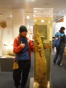 Rhodri and part of a whale weighing as much as him, A Robertson