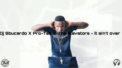 Photo of DJ Sbucardo, Pro-Tee & The Elevators – It Ain't Over