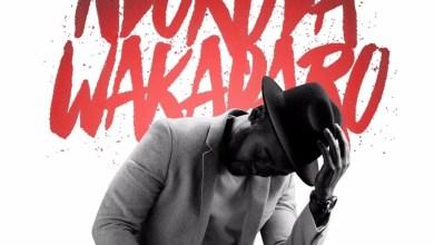 Photo of Charlie Kay  – Ndokuda Wakadaro (feat. Nox)