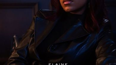 """Photo of Elaine Says It's """"Risky"""" In New Song"""