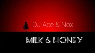 """Photo of DJ Ace & Nox release """"Milk & Honey"""""""