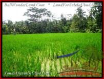 Magnificent Ubud Tegalalang 1,000 m2 LAND FOR SALE TJUB478