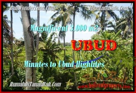 Affordable LAND FOR SALE IN Sentral Ubud BALI TJUB450