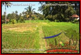 FOR SALE Beautiful LAND IN Ubud Pejeng TJUB452