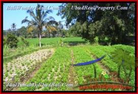 Exotic Ubud Pejeng LAND FOR SALE TJUB452