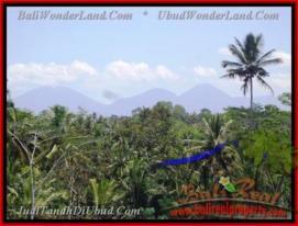 FOR SALE Affordable PROPERTY LAND IN Sentral Ubud BALI TJUB441