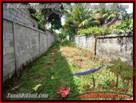 Affordable 650 m2 LAND FOR SALE IN UBUD BALI TJUB417