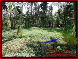 Magnificent PROPERTY Ubud Payangan 2,000 m2 LAND FOR SALE TJUB506