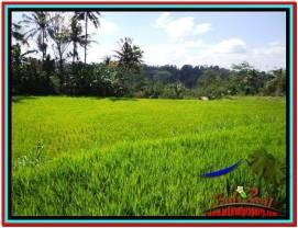 FOR SALE Affordable LAND IN Ubud Tampak Siring BALI TJUB513