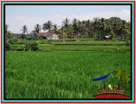 Exotic LAND FOR SALE IN UBUD TJUB528