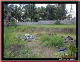 Affordable PROPERTY LAND SALE IN UBUD TJUB532