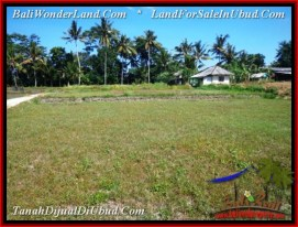 Magnificent LAND FOR SALE IN UBUD TJUB544