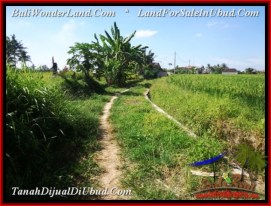 500 m2 LAND IN UBUD BALI FOR SALE TJUB545
