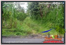 Beautiful PROPERTY LAND IN UBUD BALI FOR SALE TJUB571