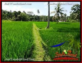 FOR SALE Beautiful LAND IN Ubud Pejeng BALI TJUB658
