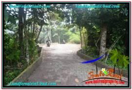 Beautiful 4,100 m2 LAND IN SENTRAL UBUD BALI FOR SALE TJUB676