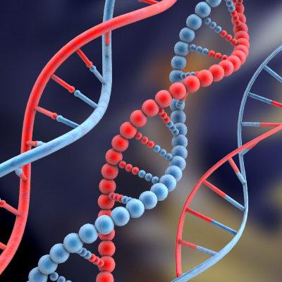 DNA umano