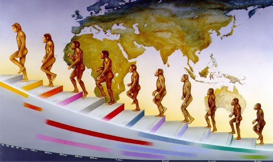 Evoluzione