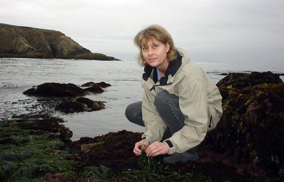 In Memoriam Susan Williams Of Bodega Marine Lab Uc Davis