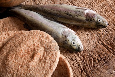 الخبز هو كلام الله هل كثر يسوع الخبز بالواقع؟ (2)