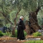 الجسمانية هو حديقة على سفح جبل الزيتون في القدس الأكثر شهرة كمكان وفقا للأناجيل