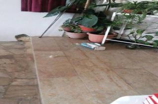 تكسير تمثال السيدة العذراء في كنيسة كهف الملول الضنية