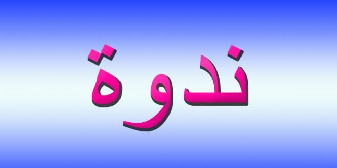 ندوة عن دور الأمير فخر الدين المعني الكبير