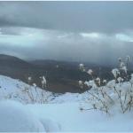 الثلوج غطت جبل المكمل والقرنة السوداء