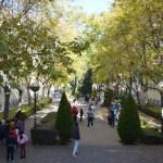 Los juegos se han celebrado en los jardines centrales del Campus de Ciudad Real