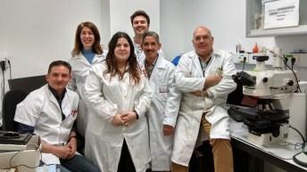 Trabajo del grupo de investigación en Neurobiología de la Audición