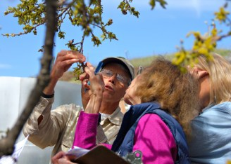 Sedgwick phenology training