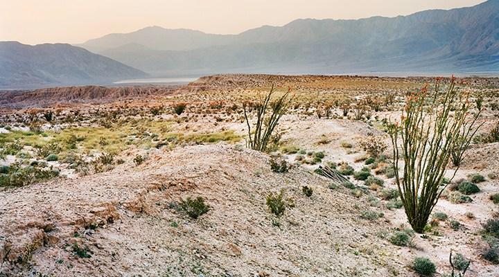 Steele/Burnand Anza-Borrego Desert Research Center