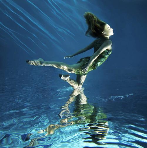 Underwater Photography by Mark Mawson