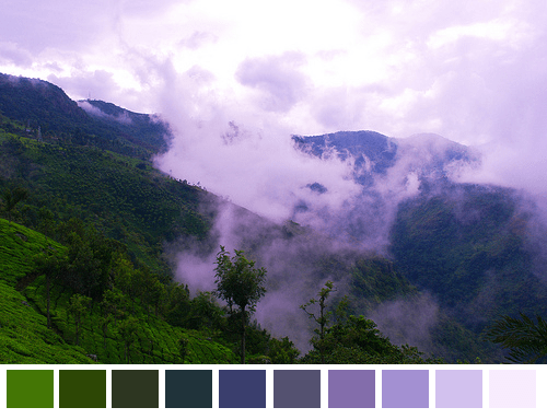 Nature-Color-Palette-005