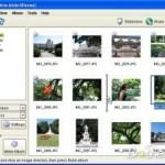 Ücretsiz JAlbum İnternet Albümü oluşturma Programı