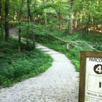 Parcours Trail Workouts for Fitness