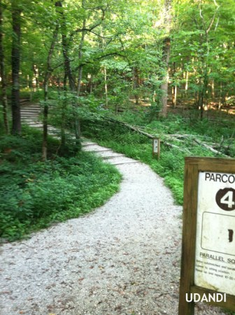 Parcours Trail Workouts for Fitness udandi.com
