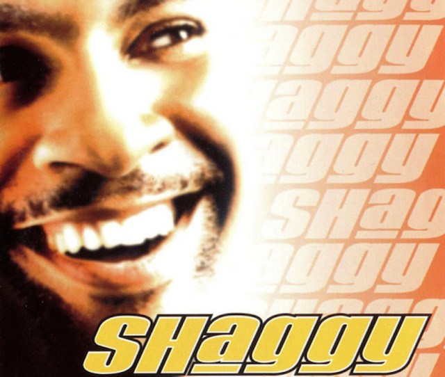 Shaggy Was The Hot Shot Of 2001