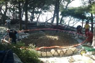 timberland korporativno volontiranje Bonsai 2